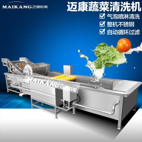 蔬菜清洗机的维护知识