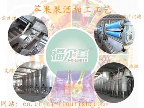 国内外苹果果酒生产设备 用创新的工艺技术提升产业发展