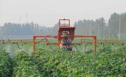 青海省湟中县蚕豆机械化联合收获技术取得突破性进展