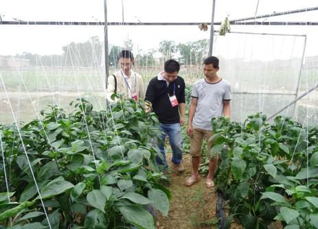 国家露地蔬菜测试中心日前落户长清区