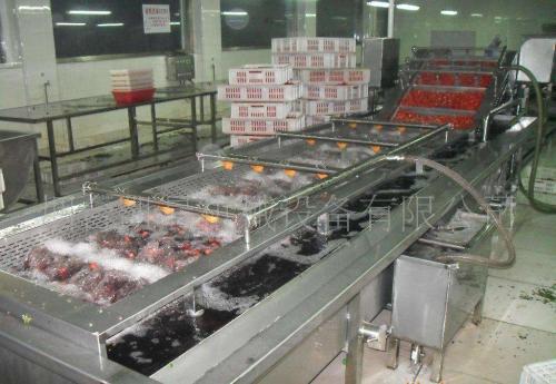 果蔬清洗机厂家教你如何正确清洗蔬菜
