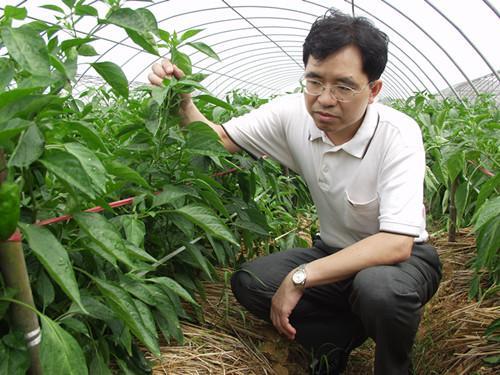 """""""辣椒""""院士邹学校:蔬菜产业要""""后劲"""",科技还须更""""给力"""""""