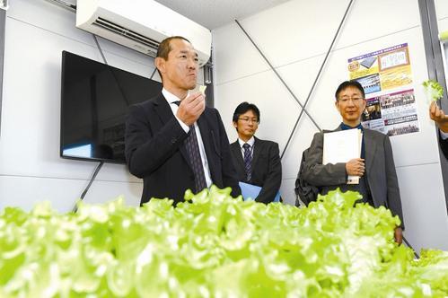 世界首个地下全自动植物工厂