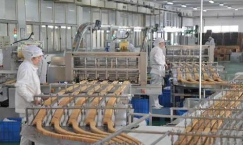 """青食""""年產9000噸1200型餅干生產線""""入選""""555""""項目"""