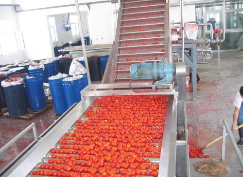 浓缩番茄酱加工成套生产线