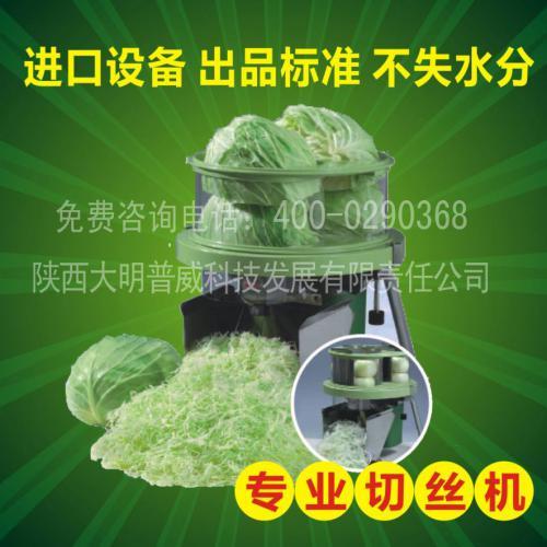 切丝机 进口全自动小型蔬菜切丝机 包菜切丝机 进口蔬菜加工设