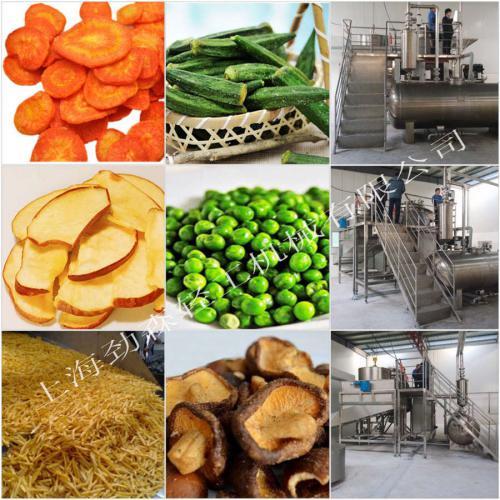 真空低溫油炸機,大型果蔬類農產品深加工設備