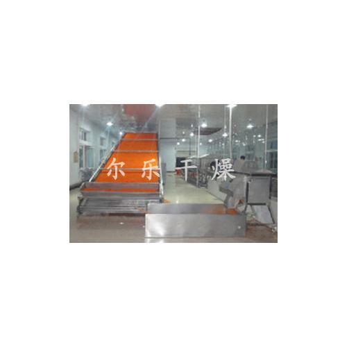 瓜子专用网带式干燥机