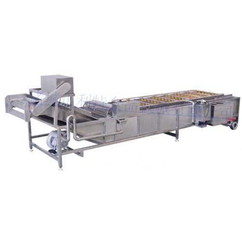 蘑菇清洗机 菌类清洗机设备 蘑菇专用清洗机厂家