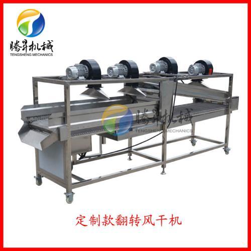 腾昇机械蔬菜风干机 辣椒清洗风干生产线