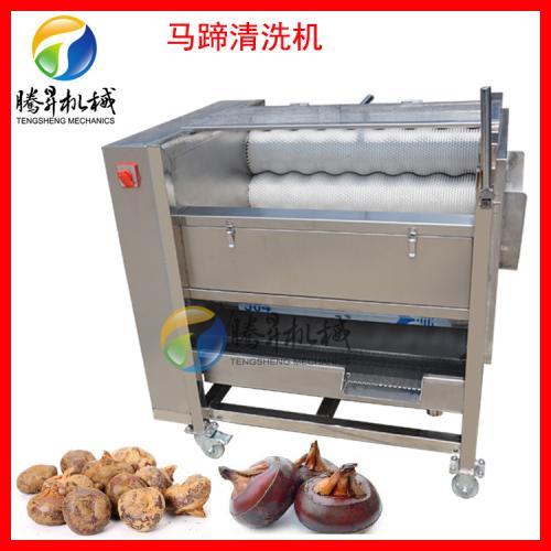 小型土豆清洗机 毛棍/毛滚去皮清洗机
