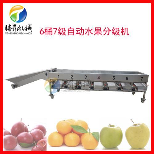 自动水果分级机 柑桔/百香果快速分等级机器