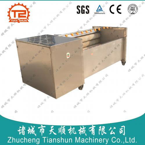 潍坊按钮式自动化中药材洋姜滚筒毛刷清洗机生产厂家