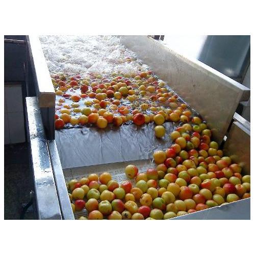 苹果加工设备生产线机械