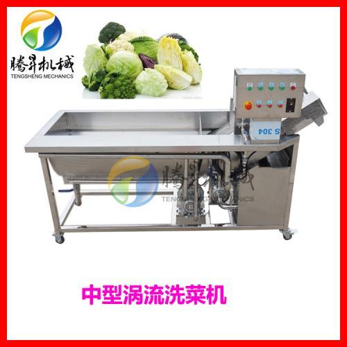 优质不锈钢自动洗菜机 大中型涡流洗菜机厂家