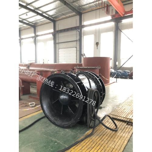 1800QGWZ全貫流潛水電泵生產廠家