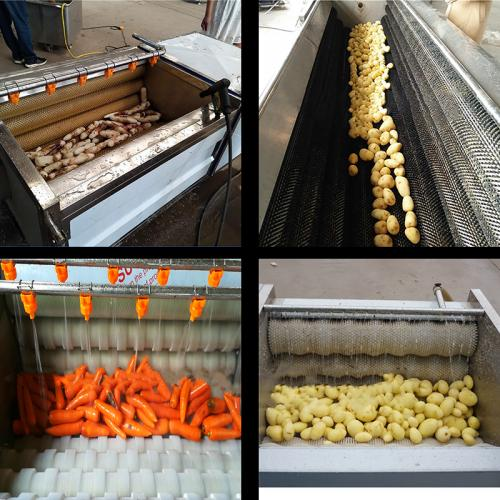 土豆毛輥清洗機土豆清洗去皮機304材質