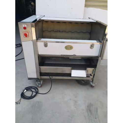 自动清洗去鱼鳞机器中药材毛辊清洗机可定制