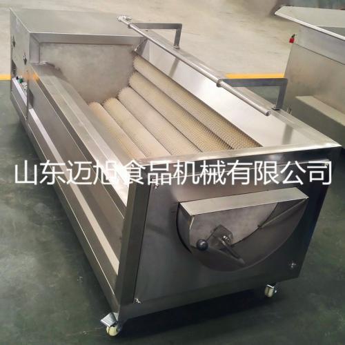 自動蔬菜清洗機生產 不銹鋼毛輥清洗機廠家