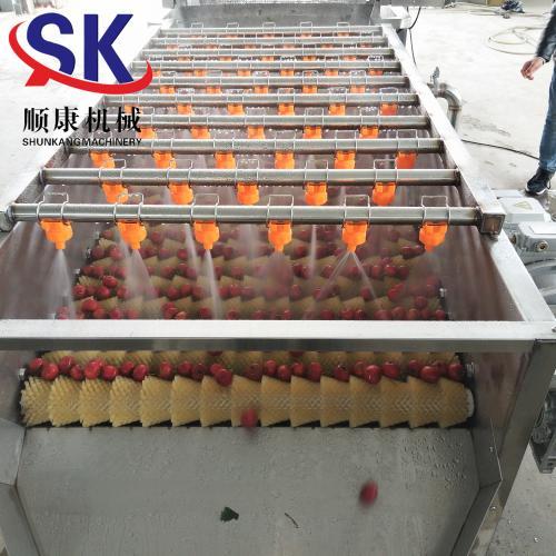 土豆去皮清洗机 食堂用 厂家