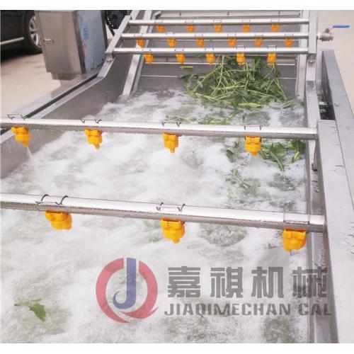 竹荪清洗设备 多种叶类果蔬清洗机