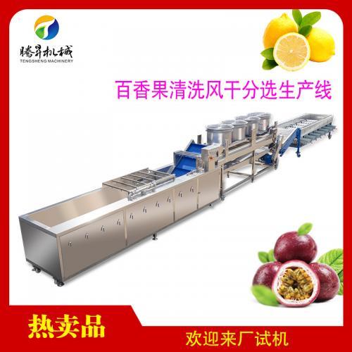 水果清洗风干分级生产线加工全套设备