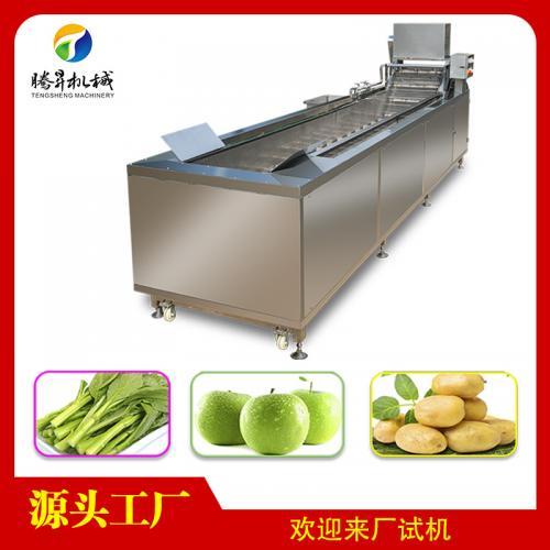 不锈钢柑桔水果蔬菜清洗机