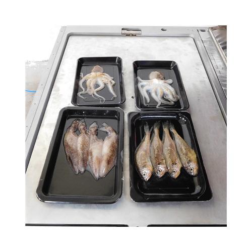 三文鱼贴体包装机,大虾贴体包装机